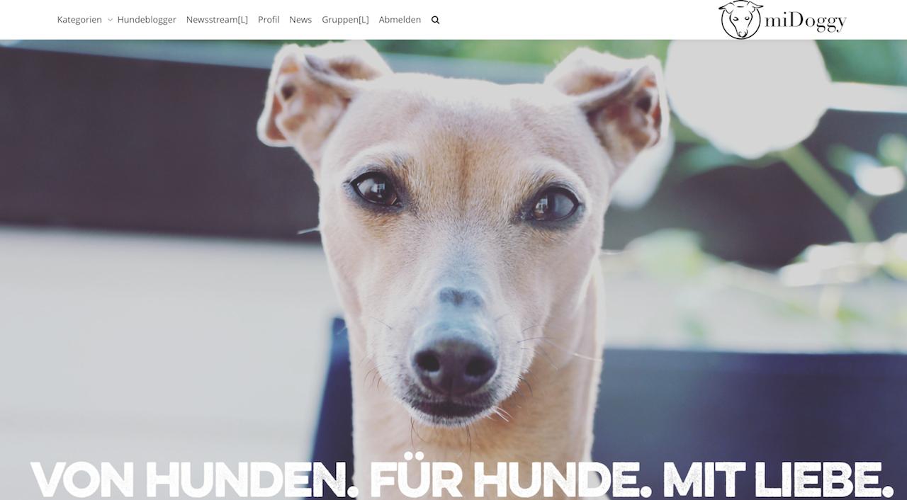 Hunde Community Plattform miDoggy