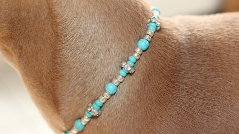 Jewelry for Lola