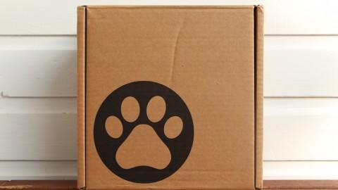 Produkttest| PfötchenBox: Die neue Hunde-Abo-Box?