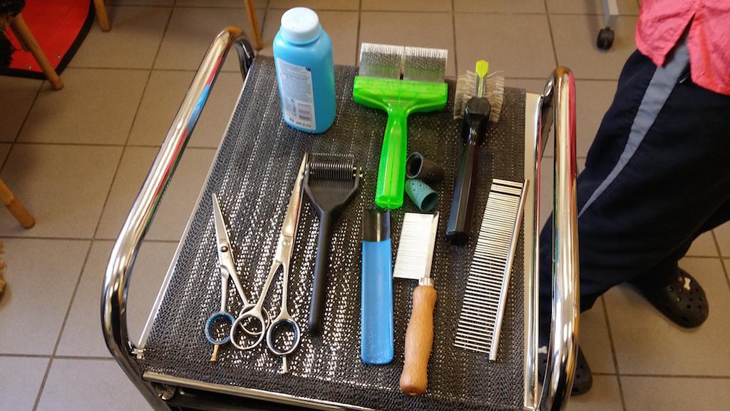 Fellpflege Cocker-Spaniel Werkzeug