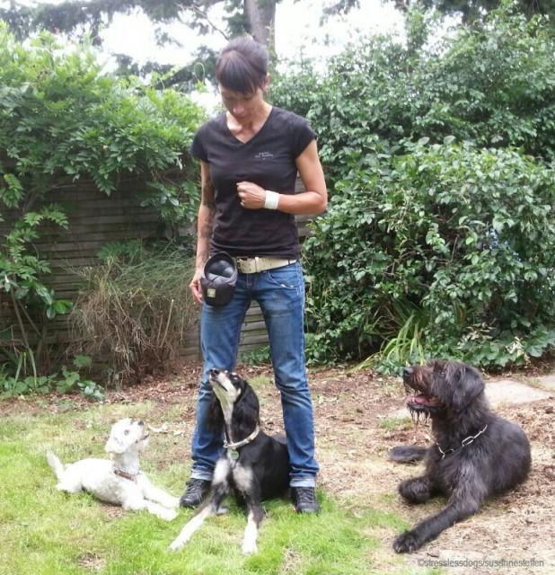 Fair-auf-Pfoten Hundeblog miDoggy