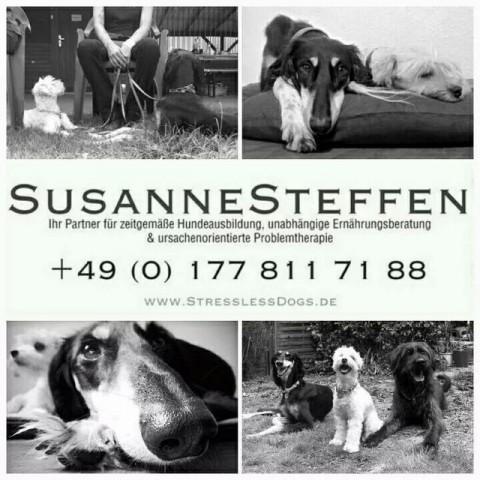 Interview mit Susanne Steffen bei Fair-auf-Pfoten
