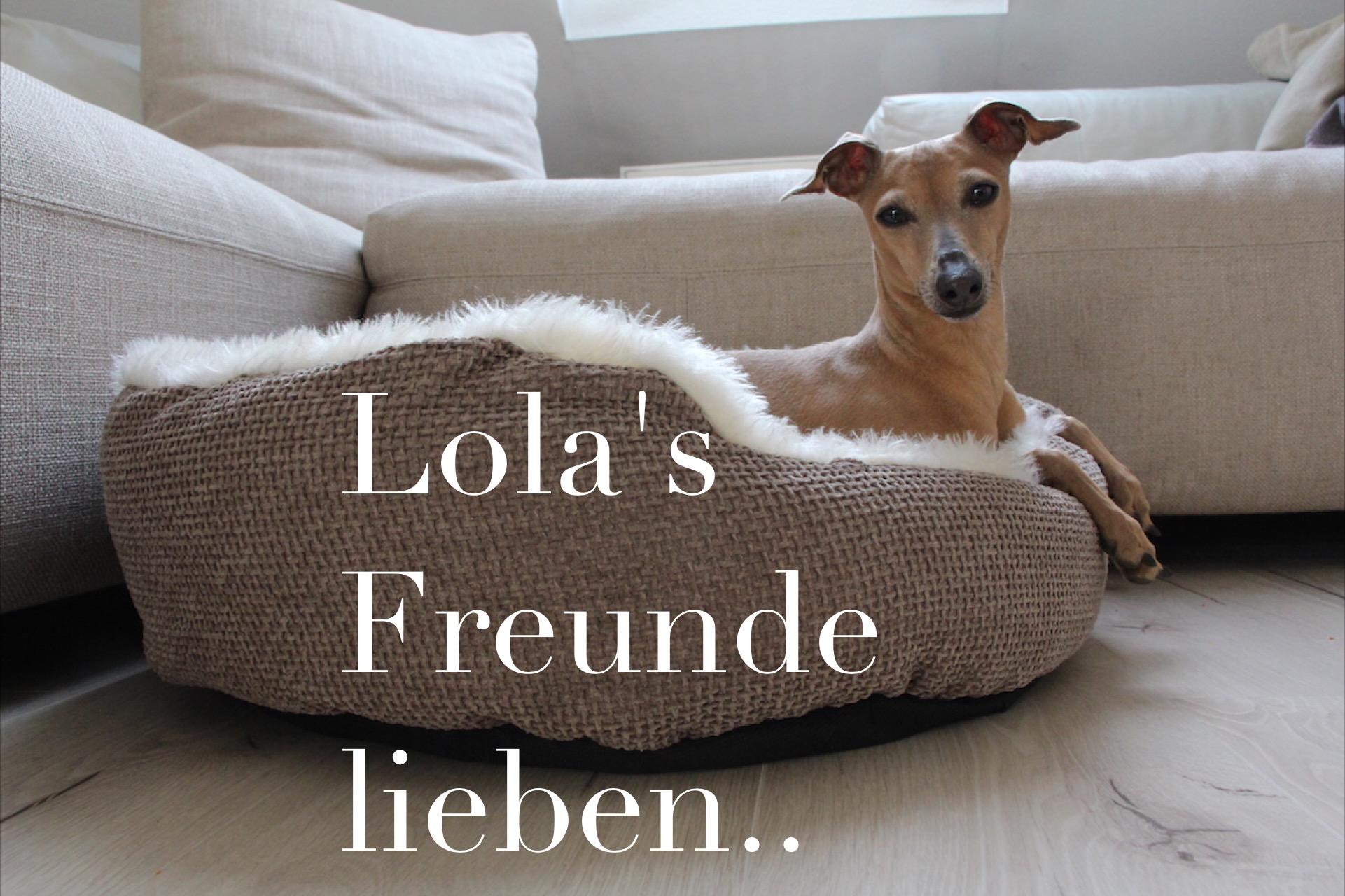 Lola's Freunde lieben Hundeblog miDoggy