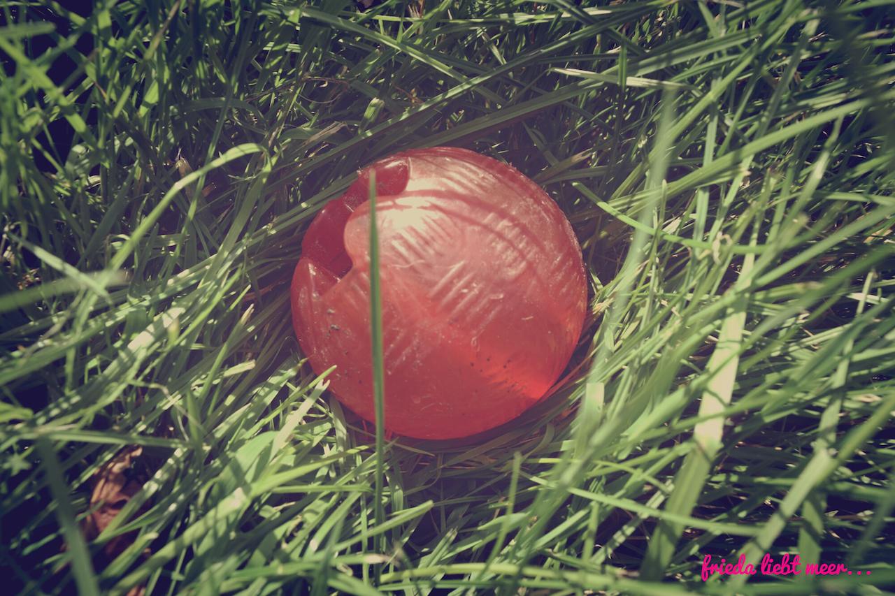 Bite-me strong ball miDoggy