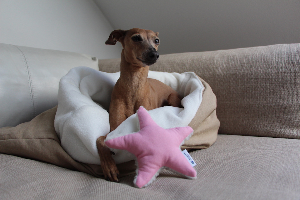 Hundeschlafsack handmade for dogs