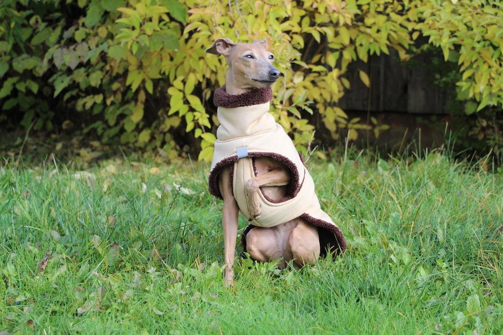 Hundemantel kuschelig Hundeblog miDoggy