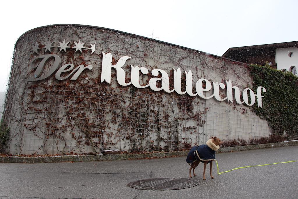 Hundeblog miDoggy Krallerhof