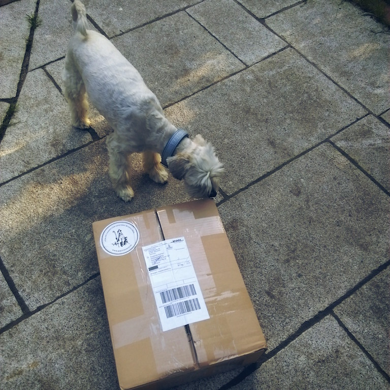 Hundefutter Hirtengold Hundeblog miDoggy