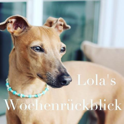 [Lola's Wochenrückblick]