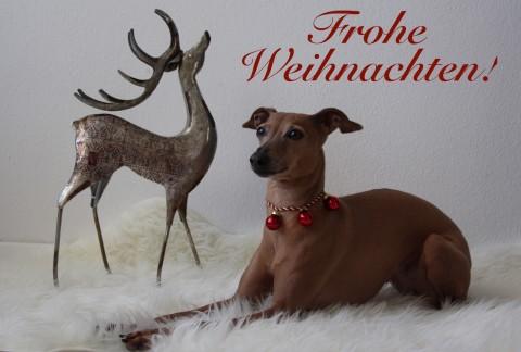 [Weihnachtsgeschichten] Frohes Fest!