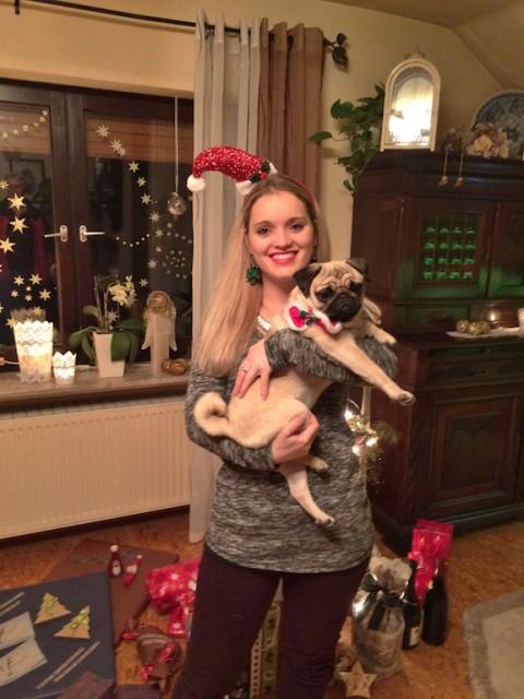 Weihnachtsgeschichte Molly miDoggy