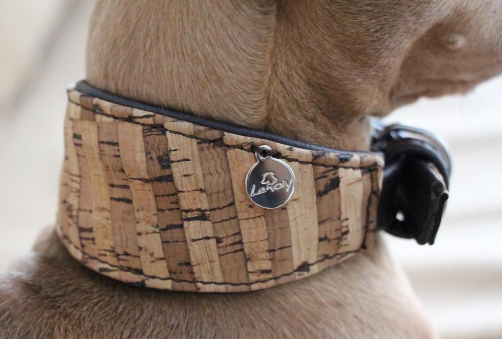 Halsband Kork Le Roiy Hundeblog miDoggy