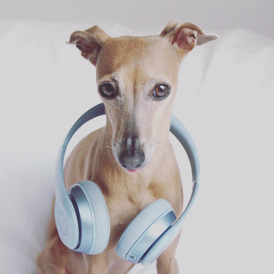 Mittwoch Wenn ich meine Kopfhörer aufsetzte, wird mein Leben zum Musikvideo