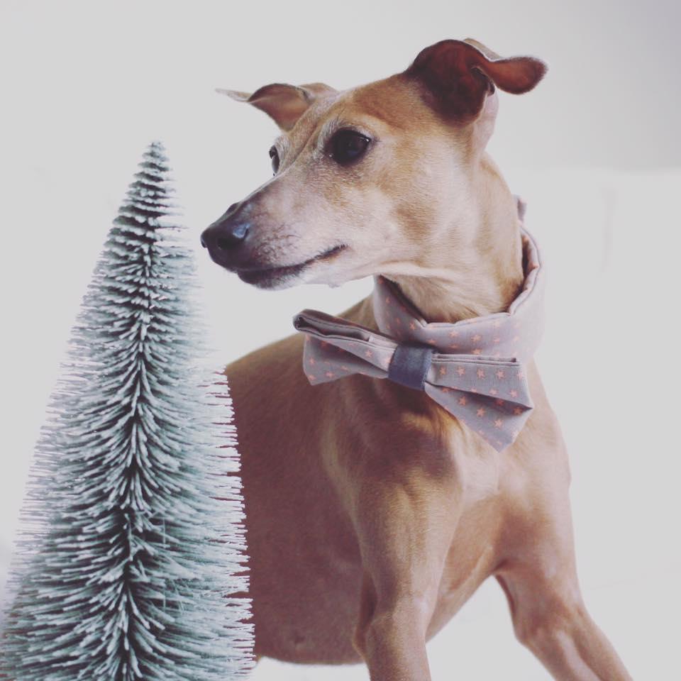 Donnerstag: Christmas mood!