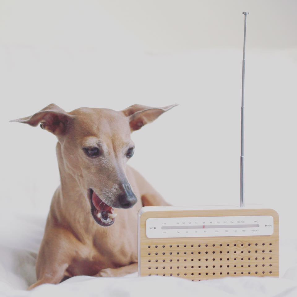 Mittwoch: she's got nothing on...but the radio.