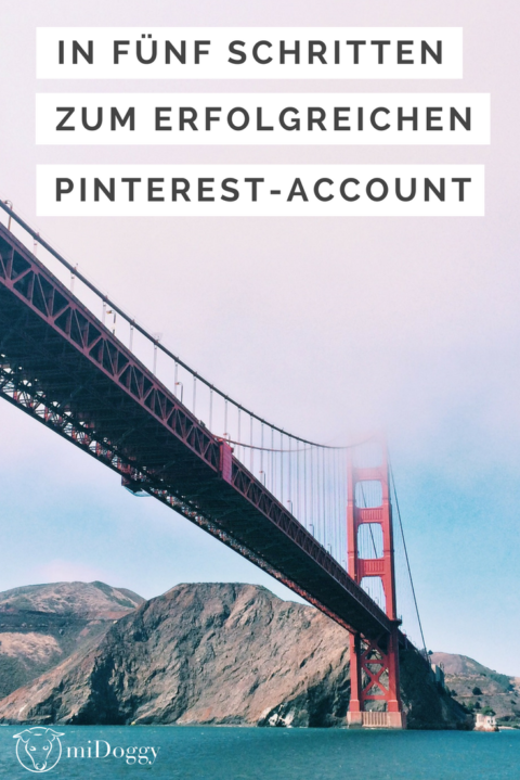 In fünf Schritten zum professionellen Pinterest-Account