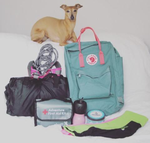 Packliste für die nächste Wanderung mit Deinem Hund [Anzeige]