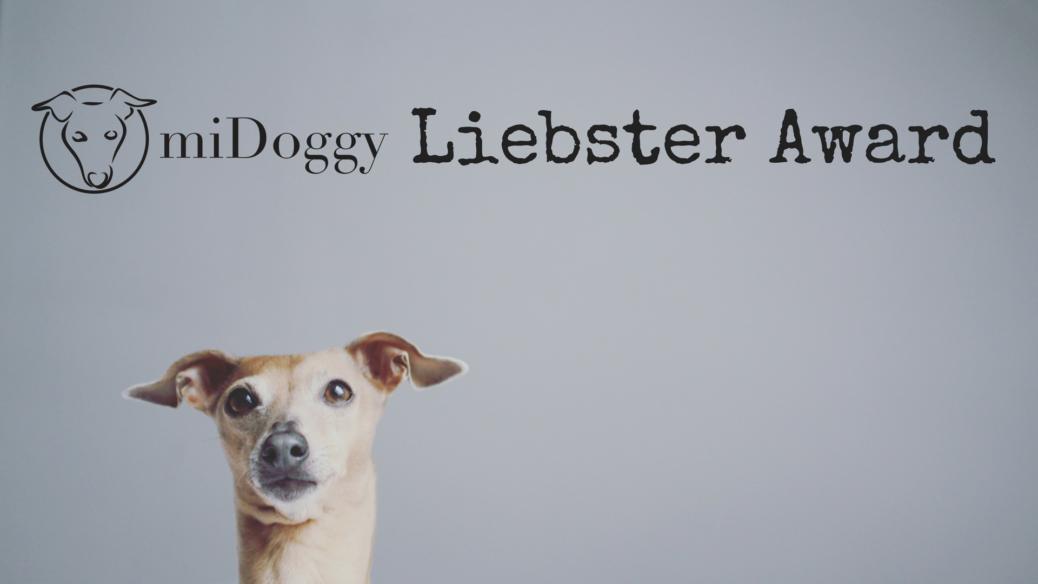 miDoggy Liebster Award