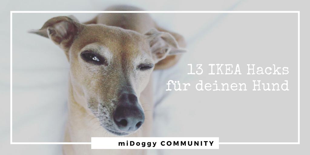 13 IKEA Hacks für Deinen Hund