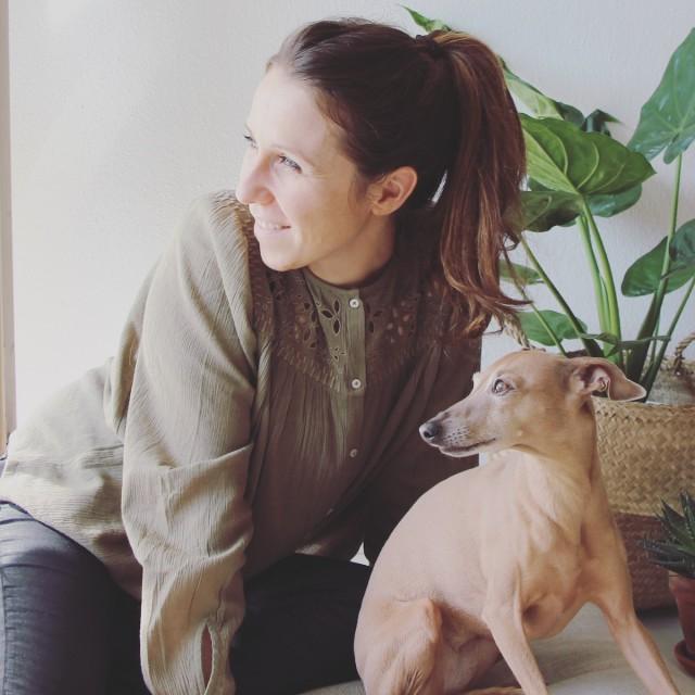Hundeblog Kooperation